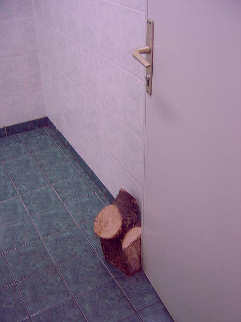 doors_tree